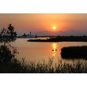 Ηλιοβασίλεμα-Κύκνοι